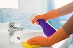 [한 끗 리빙] 추석 전 욕실 청소, 세제만 잘 고르면 너무 쉬워진다