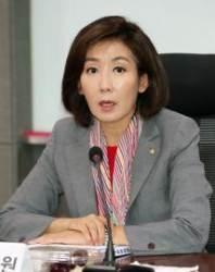 """나경원 """"일본 자민당 관련 간담회 '친일 행위' 매도…안타깝다"""""""