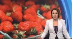 '먹기 전 반드시 잘라보세요' 호주 이어 뉴질랜드서도 '바늘 딸기'