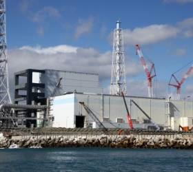 안전해서 바다에 버린다더니…<!HS>후쿠시마<!HE> 오염수 80%가 기준치 초과
