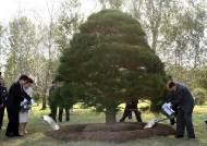 10·4선언 방북단, 11년전 심은 '노무현 소나무' 둘러볼 듯