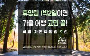 [카드뉴스] 휴양림 1박2일이면 가을 여행 고민 끝