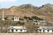 천안함 폭침 때도 대북 산림지원은 타진했던 북한의 속사정