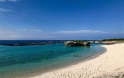 비경의 산호섬, 日 기카이지마…사탕수수밭에 숨은 300년사