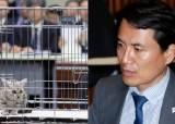 한복·태권도복·야알못... 반환점 돈 국감의 '튀어라 경쟁'