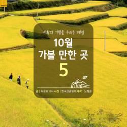 [카드뉴스] 수확의 기쁨 누리는 계절 10월 가볼 만한 곳 5