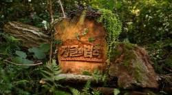 <!HS>태풍<!HE> 휩쓴 사이판서 예능 촬영?…'정글의법칙' 촬영 논란