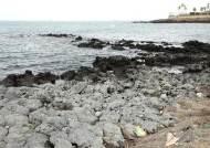 제주 해안가서 꽃무늬 점퍼 입은 4~5세 여아 시신 발견