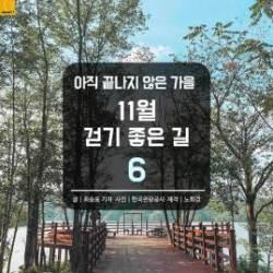 [카드뉴스] 아직 끝나지 않은 가을…11월 걷기 좋은 길 6