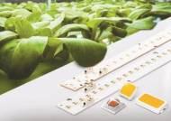 연구인력 3분의 1 반도체로 이동…삼성, LED사업 재편