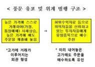 """""""유망 증권 소개"""" …가격 뻥튀기 8억 챙긴 주식 카페 운영자"""