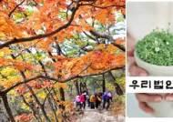 """산행으로 치른 우리법연구회 30년 모임…""""해산 논의 나와"""""""