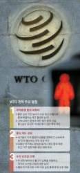 [이재민의 퍼스펙티브] 와해 위기의 WTO 체제, 한국이 개혁 주도하자