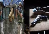필리핀 '마약과의 전쟁' 공식 사망자만 5000명 넘어