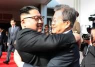 """文 정부""""북한 체제 안전 보장하는 비핵화 추구할 것"""""""