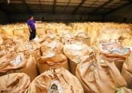 정부 수매 부활로 국산밀 붕괴 막았지만…자급률 9.9% 먼 길
