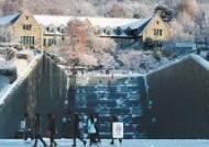 [대입 내비게이션 - 2019 정시 특집] 정시 통합선발 신입생에겐 전공 선택권 부여