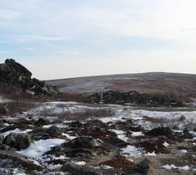 북극 빙하 속 잠든 바이러스···지구온난화로 깨어난다
