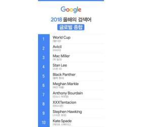 올해 구글 검색어…세계 1위 '월드컵' 한국 1위 '로스트아크'
