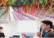 [우리 농업의 기회와 도전] 스마트팜으로 지역환경 극복 … 미래 예측 농법 가능
