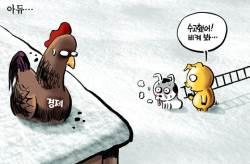 [<!HS>박용석<!HE> <!HS>만평<!HE>] 12월 31일