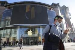 중국인 아이폰 보이콧, 결국 애플을 쳤다