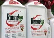 GMO작물 속 발암물질을 보는 두 가지 시각