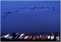 [조용철의 마음 풍경] 높이 날자