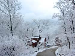 산림청이 콕 집었다 겨울이 좋은 자연휴양림 6