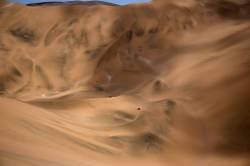 [<!HS>서소문사진관<!HE>] 고요한 사막의 굉음<!HS>,<!HE> 중반전 치열한 다카르 랠리
