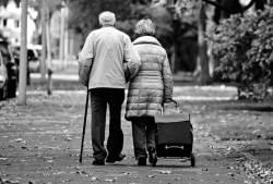 70세 되면 의무적으로 세상을 뜨는 법 발효? 이게 무슨 일