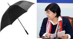 [단독] 서영교 청탁 재판은 강제추행 미수 사건