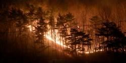 지구온난화가 산불을, 산불은 다시 온난화를 부채질한다