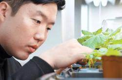 [제5회 한광호 농업상] 작물 유전체 연구 성과 바탕, 신품종 육성 등 국내 육종 기술 개발 선도