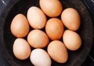 달걀로 암을 치료한다? …유전자 변형으로 항암 효과 달걀 생산