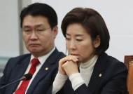 """나경원 """"손혜원 국정조사 하면, 의원들 이해충돌 전수조사 좋다"""""""