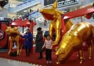 중국 소비 확 줄었는데 해외 투자 급증?…중국 중산층 미스터리
