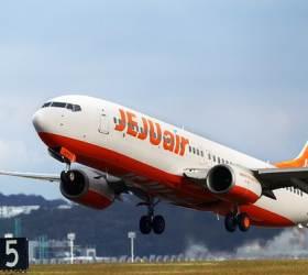 일본행 비행기표 5만원? 4월 꽃놀이 항공권이 뜬다