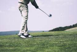 봉사활동 간다며 골프···정부출연연구소 28명 적발