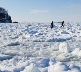 얼음 덮인 바다를 걸었다… 홋카이도의 겨울 한정판 비경