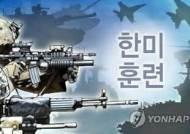 """한미, 키리졸브·독수리훈련 종료 결정…""""비핵화노력 뒷받침"""""""