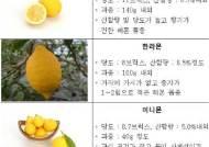 우리나라 1호 토종 레몬 '제라몬' 12년만에 묘목 보급