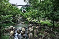 [THIS WEEK] 겨울잠에서 깬 수목원, 곤지암 화담숲 9일 개장