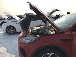 """""""넘을 수 없는 장벽""""…팰리세이드 올해의 차"""