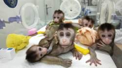 [<!HS>2050년<!HE>의 <!HS>경고<!HE>] 아이 원하는 혈우병 환자, 1억 들고 中 원정치료 간다