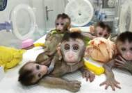 [2050년의 경고] 아이 원하는 혈우병 환자, 1억 들고 中 원정치료 간다