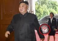 """유엔 안보리 """"김정은 롤스로이스·벤츠 등 제재위반"""""""