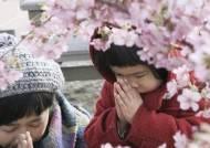 동일본 대지진 8년, 그래도 사람들은 논밭을 일군다