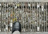 [강찬수의 에코파일] 담배꽁초는 쓰레기가 아닙니다, 유해 폐기물입니다