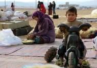 정부, 시리아와 그 주변국에 1200만불 규모 인도적 지원 계획